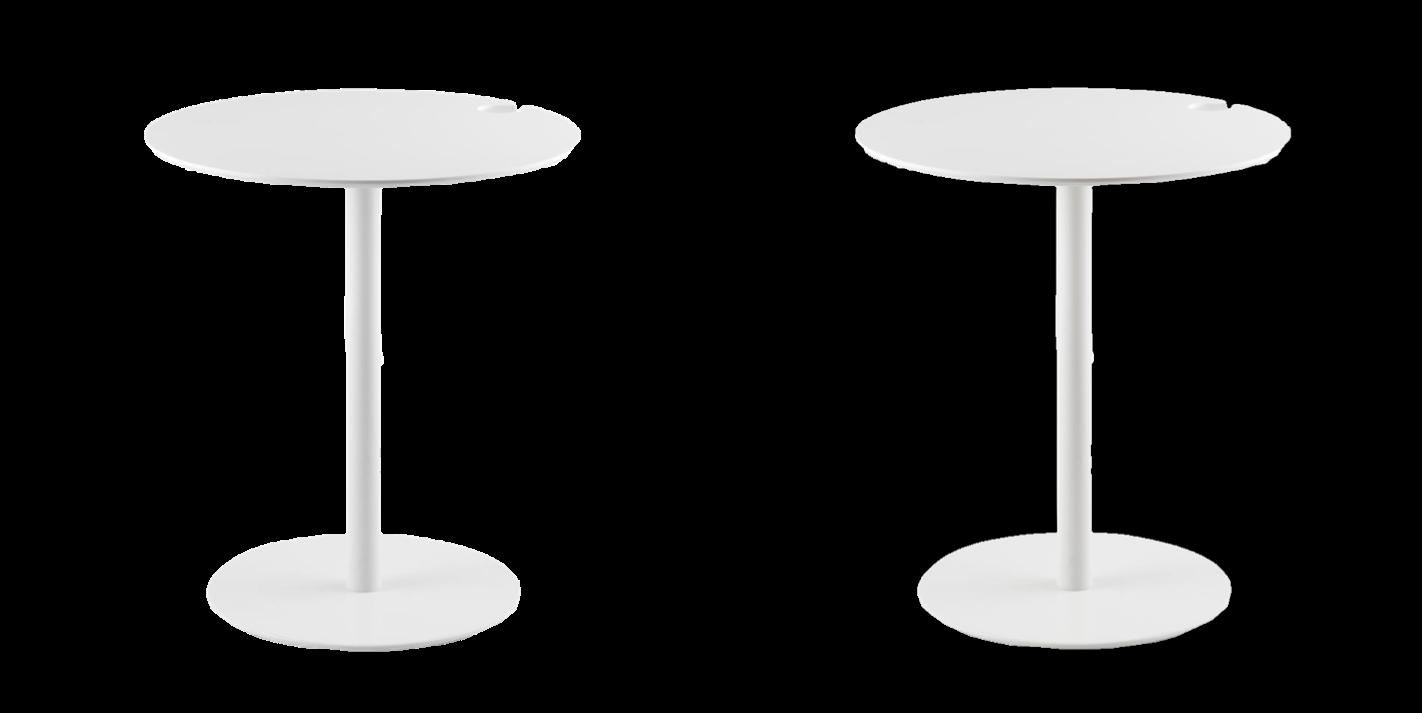 immagine categoria